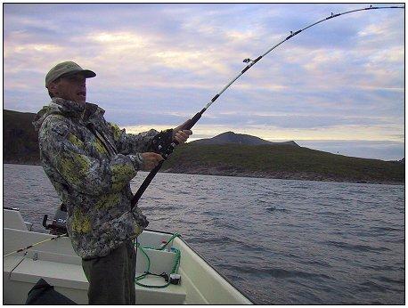 fiskestang havfiske